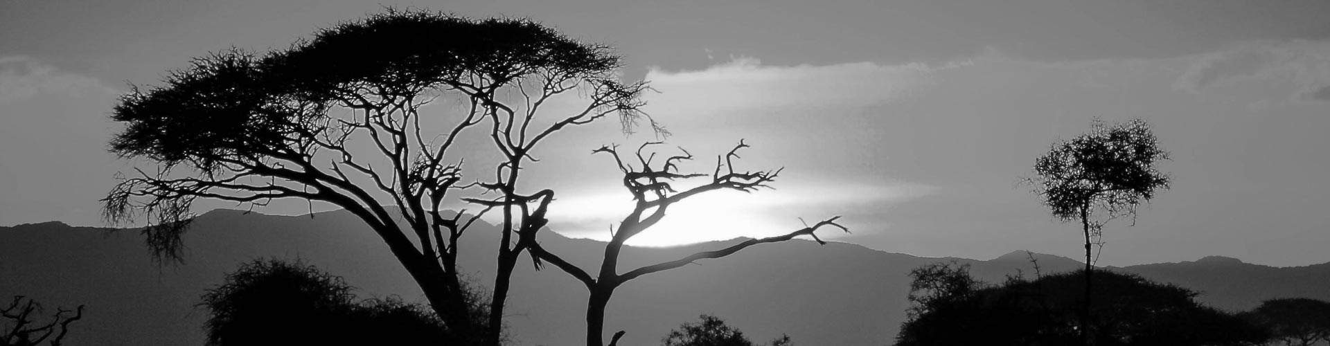 Tanzania Travel Advice